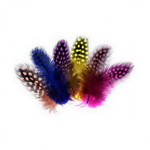 Decorative Feathers by Meyco / Dots Mix