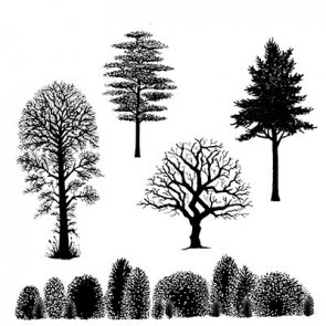 Clear Stamps / Lavinia / Tree Scene