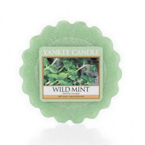 Vosk Yankee Candle / Wild Mint